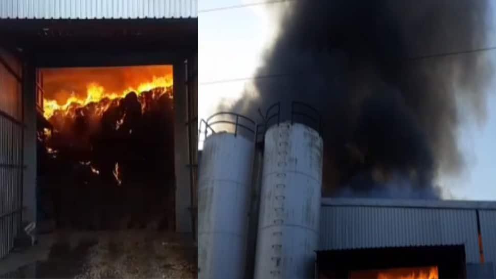 ગોંડલ: મગફળીના ગોડાઉનમાં આગ લાગતા 1000 ટન મગફળી બળીને ખાખ