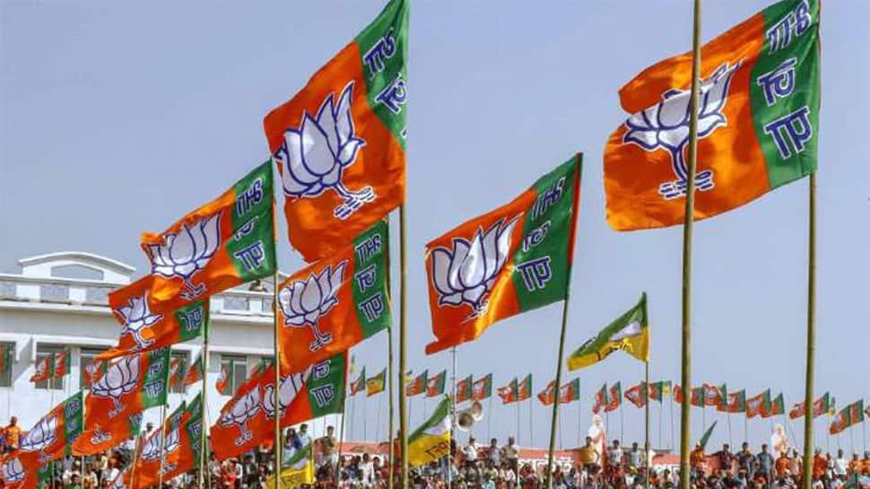 સાંસદ બનેલા BJPના ચાર ધારસભ્યોનું રાજીનામું, જાણો કોણ હશે પેટાચૂંટણીના ઉમેદવાર?