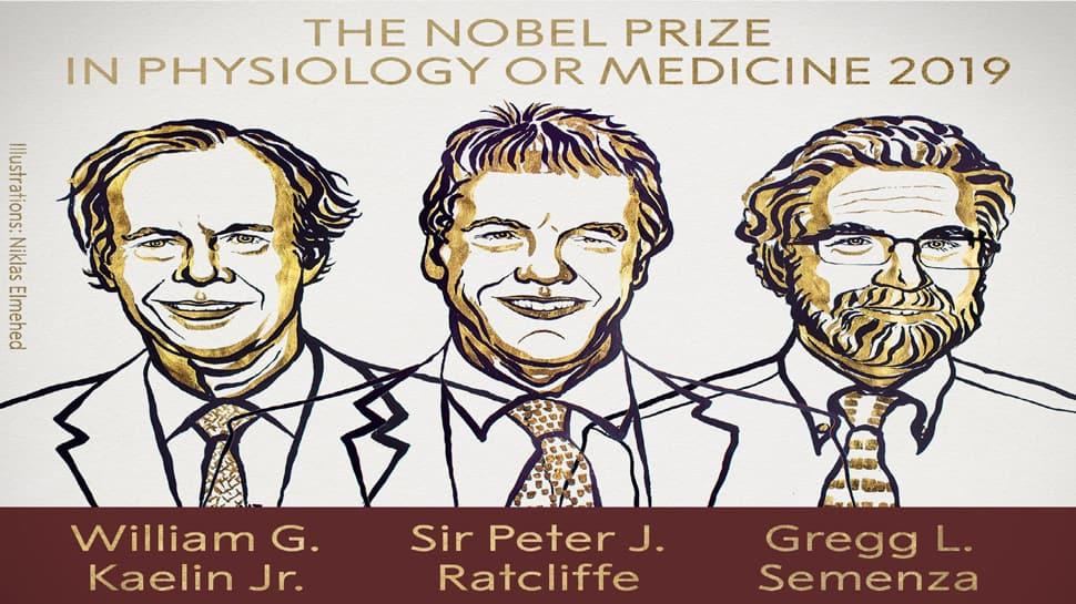Nobel Prize 2019 : બે અમેરિકન અને એક બ્રિટિશરને મળ્યો મેડિસિનનો નોબેલ