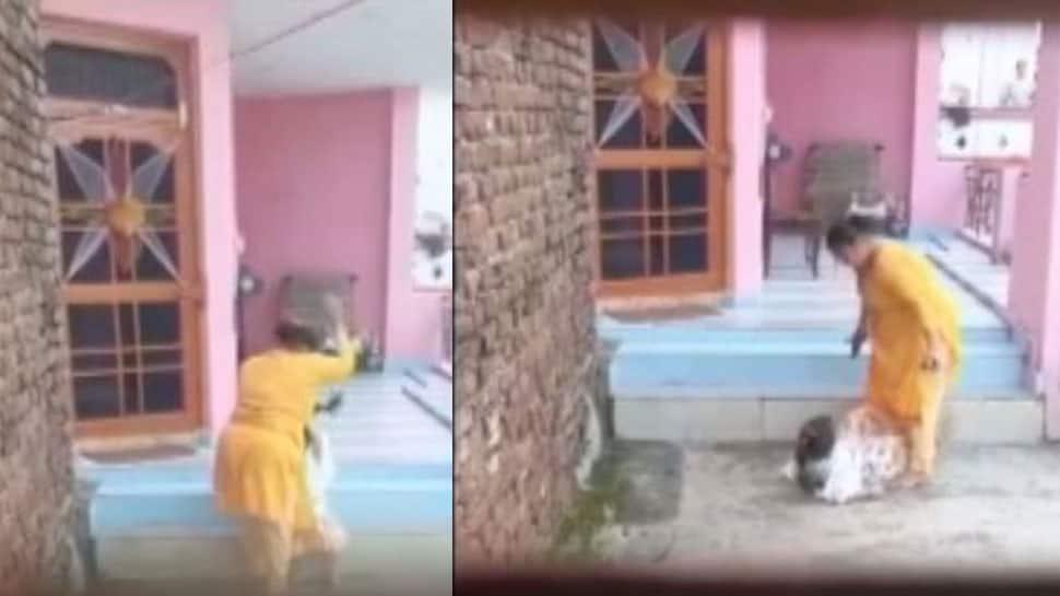 VIDEO: નિર્દયી માતાએ બાળકીને વાળ ખેંચી જમીન પર પટકી લાત-ઘૂસા માર્યા, તપાસમાં કારણ અંગે મોટો ખુલાસો