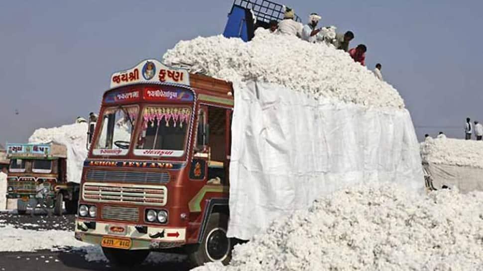 કપાસમાં કૌભાંડ ! સાબરકાંઠામાં મહારાષ્ટ્રથી સસ્તું કપાસ લાવી મોંઘા ભાવે સરકારને ચિપકાવાય છે?