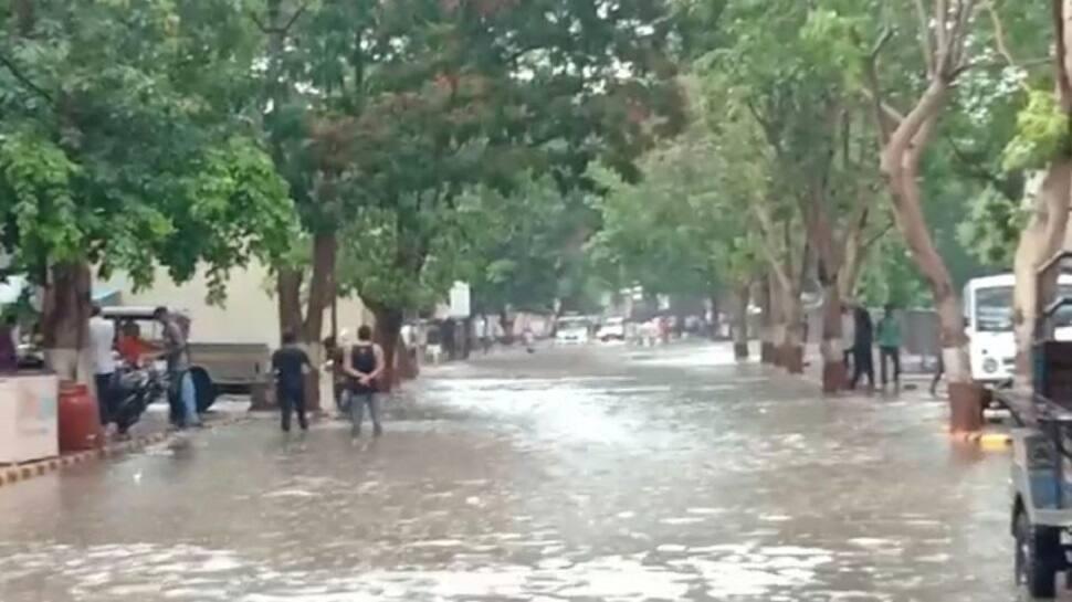 રાજ્યમાં જામ્યો ચોમાસાનો માહોલ, આજે 155 તાલુકામાં મેઘરાજાની પધરામણી, દ્વારકા જિલ્લામાં સૌથી વધુ વરસાદ
