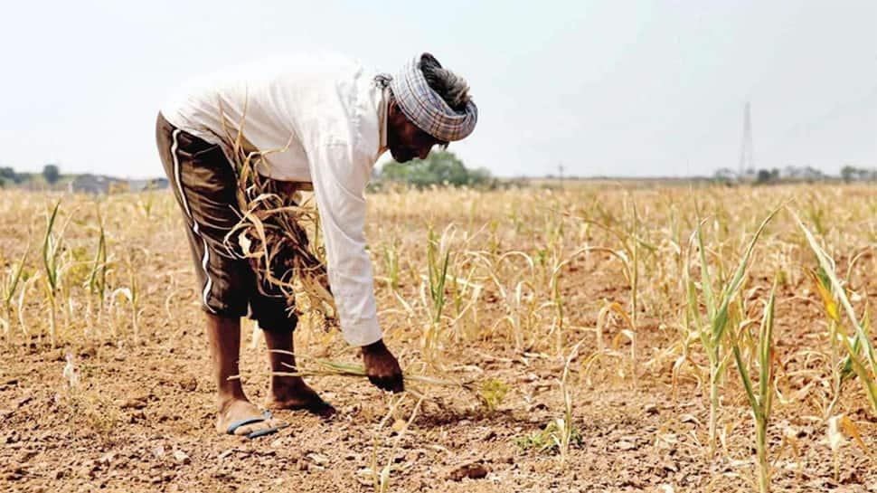 રાજ્યના ખેડૂતો માટે સરકારે કરી 3700 કરોડના સહાય પેકેજની જાહેરાત