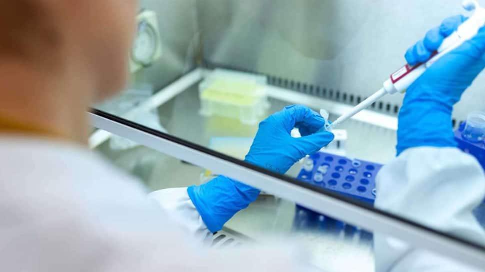 બોગસ રિપોર્ટ બનાવવા મુદ્દે રાજ્યની તમામ ખાનગી લેબોરેટરી સામે તપાસના આદેશ