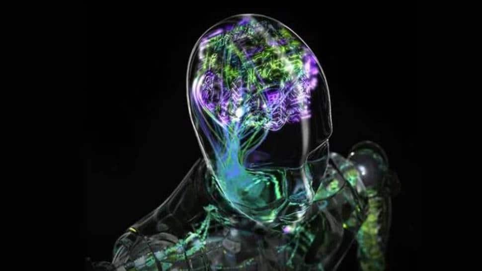 Artificial Intelligence Research: શું તમે જાણવા ઇચ્છો છો તમારા મોતનો સમય? સંશોધનમાં સામે આવી આ વાત