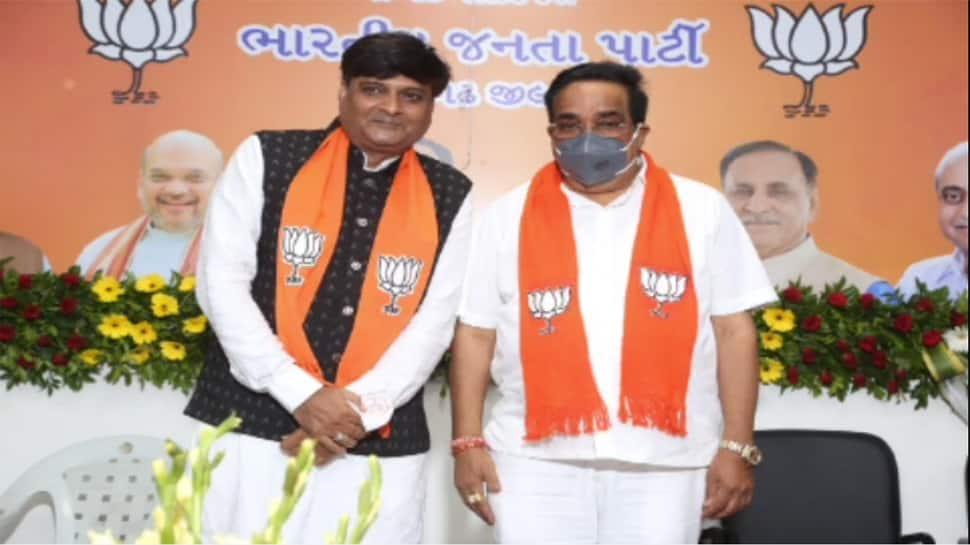 કડવા પાટીદારોને અન્યાય થવાનું કારણ ધરીને જુનાગઢના BJP ના મહામંત્રીએ આપ્યું રાજીનામુ