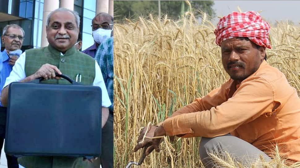 Gujarat Budget 2021: બજેટમાં સરકારે ખેડૂતોને કર્યા ખુશ, જાણો શું-શું મળ્યું