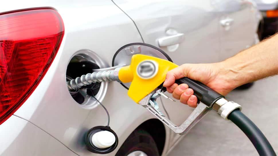 Petrol-Diesel ના વધતા જતા ભાવ વચ્ચે મોટી રાહત, સરકારે હવે આ ઓઇલને આપી મંજૂરી