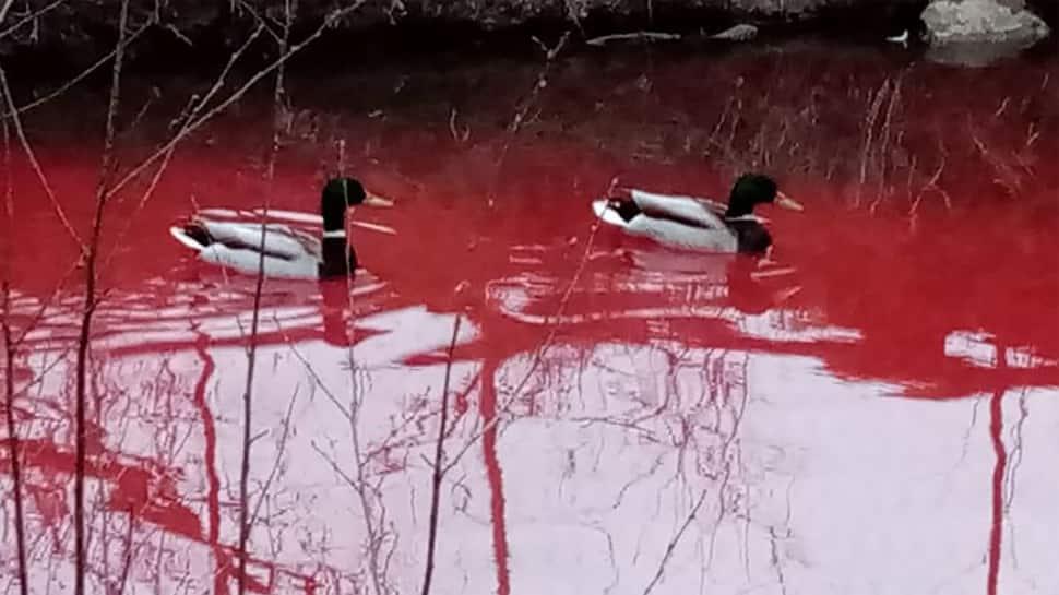કૂવાનું પાણી લોહી જેવું થઈ ગયું લાલ... દેશની ટોચની સિમેન્ટ કંપની પર લાગ્યો મોટો આરોપ