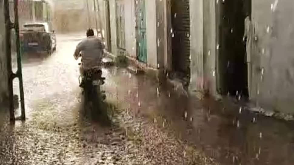 કચ્છમાં કરા સાથે વરસાદ, લોંગડી ગામમાં માછલીઓનો વરસાદ, શું છે કુદરતનો સંકેત?