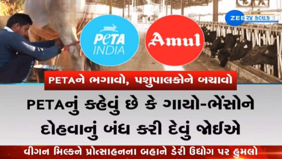 PETA V/s Amul : વિગન દૂધ અંગેના પેટાના નિવેદનથી રોષે ભરાયા ગુજરાતના પશુપાલકો