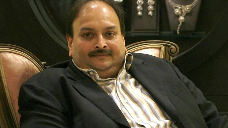 PNB Fraud Case: જાધવ કેસમાં પાકિસ્તાનને ધોબીપછાડ આપનારા આ વકીલ હવે ભાગેડુ મેહુલ ચોક્સીની કરાવશે ભારત વાપસી?