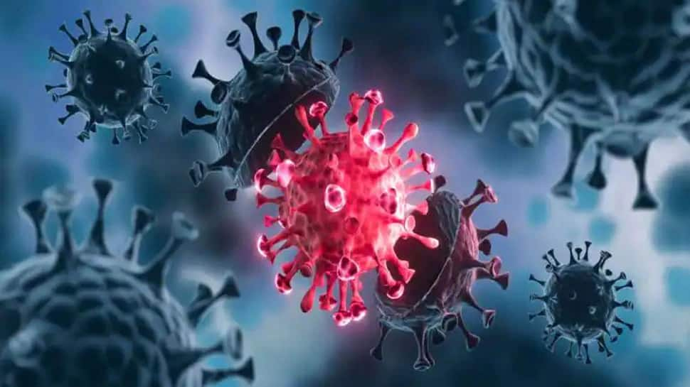 Coronavirus: India માં મળ્યા 120 થી વધુ Mutation, 8 છે સૌથી ખતરનાક, સ્ટડીમાં થયો આ ખુલાસો