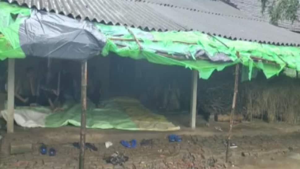 નવસારીમાં જમીનના નાનકડા શેઢામાટે લોહીયાળ જંગ, જેઠ દ્વારા વહુની હત્યા કરી નંખાઇ