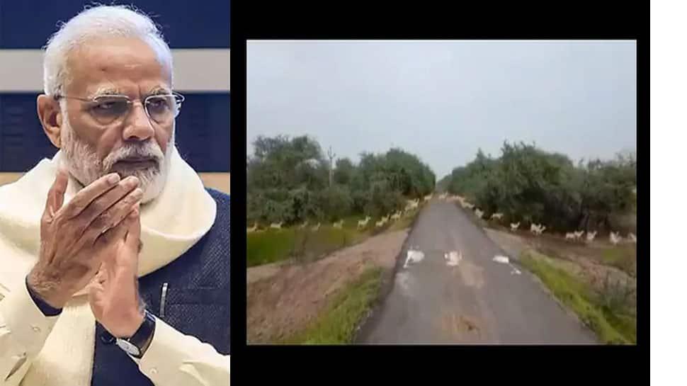 PM Modi પણ ગુજરાતના અદભૂત નજારાનો વીડિયો શેર કરતા ખુદને રોકી ન શક્યા