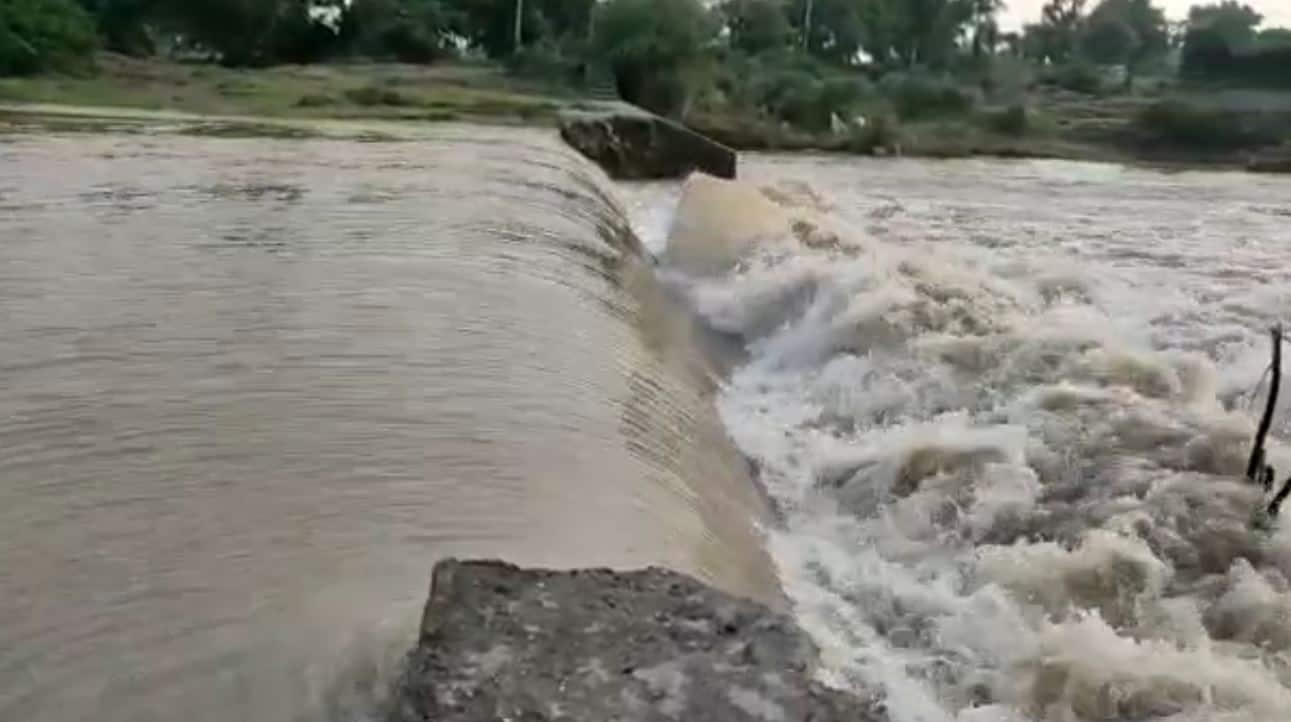 રાત્રે 10 કલાક સુધી રાજ્યના 147 તાલુકામાં વરસાદ, જામનગરના જોડિયામાં 7.5 ઇંચથી વધુ વરસાદ