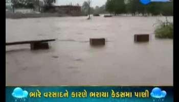 Heavy rains in Rajasthan, Watch