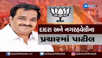 Dadra Nagar Haveli Lok Sabha Seat Election