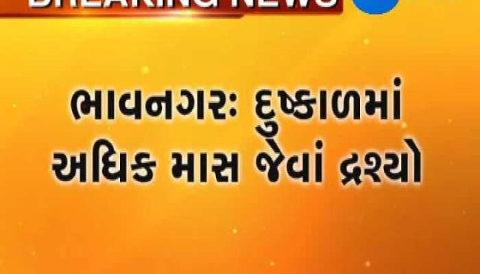 Bhavnagar Water goes waste as guard forgets to turn valve off Zee 24 Kalak