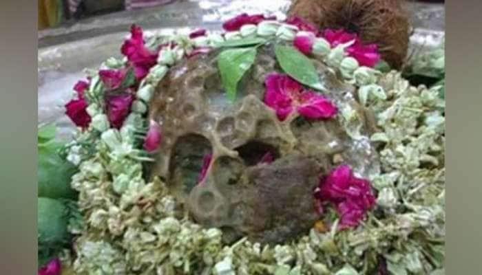1001 છિદ્રોવાળું આ અદભૂત સફેદ શિવલિંગ અકાળ મૃત્યુથી કરે છે રક્ષા, દૂર દૂરથી આવે છે લોકો