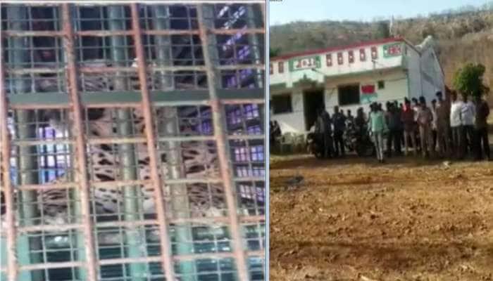 પાવીજેતપુર : અડધી રાત્રે 9 માસના બાળકને ઉઠાવીને ફાડી ખાનાર દીપડાને જોવા ગામ ઉમટ્યું
