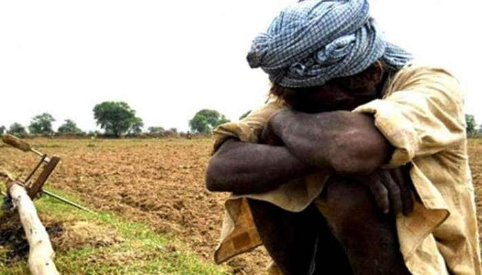 એક જ દિવસમાં ગુજરાતના 2 ખેડૂતોએ કર્યો આત્મહત્યાનો પ્રયાસ
