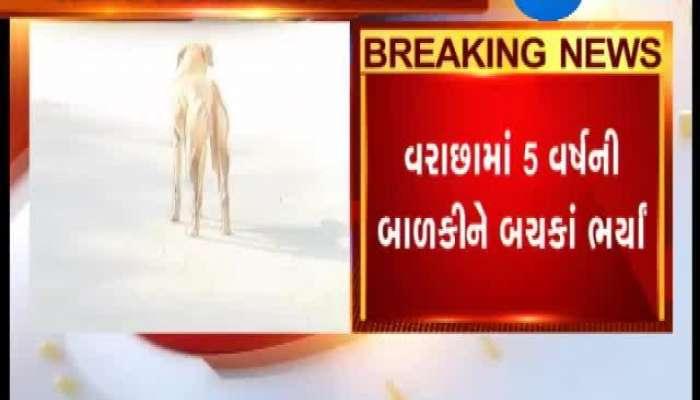 Dog bite a girl dangerously at Surat