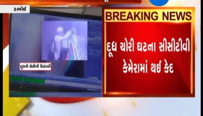 Vadodara Dabhoi Police Theft Milk Packet Caught In CCTV