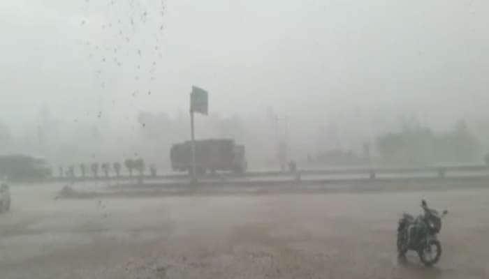 અરવલ્લી: વાવાઝોડા સાથે વરસાદ શરૂ થતા 40 ઝાડ ઘરાશાયી, હાઇવે પર 10 કિમીનો ટ્રાફિક