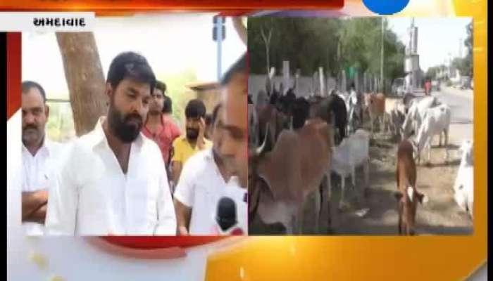 Ahmedabad Maldhari Demand Reserve Plot For Gauchar