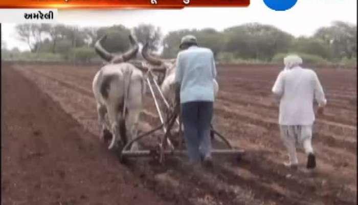 Amreli: Farmers Rejoice After Govt. Pays Grain Dues
