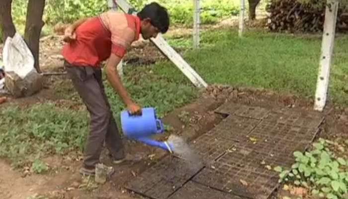 સુરતમાં શરૂ થશે ફેમિલી ફાર્મર અભિયાન, ઘરમાં જ થશે શાકભાજીની ખેતી