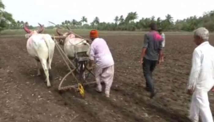 મન મૂકીને વરસાદ વરસતા ખેડૂતોએ પૂજા કરીને વાવણી શરૂ કરી