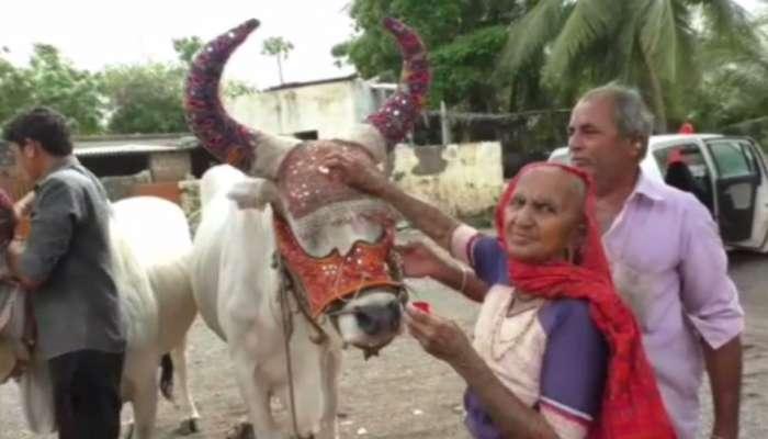 'વાયુ' વાવાઝોડાને કારણે ગુજરાતના ખેડૂતોને મળી મોટી ખુશી, ખાસ મુહૂર્તમાં કરી શક્યા વાવણી