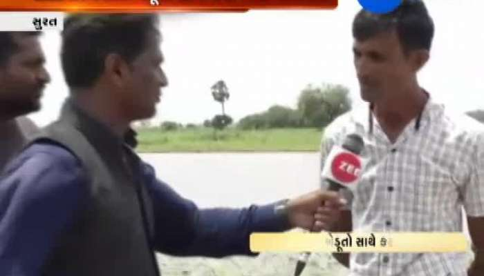 Surat: Farmers Distressed Due to Less Rainfall