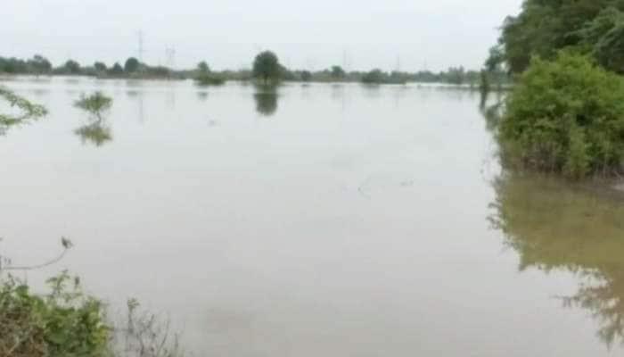 ભરૂચ: વરસાદી પાણીનો નિકાલ ન થતા ખેડૂતોને લાખો રૂપિયાનુ નુકશાન