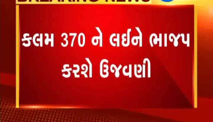 BJP Celebration Of 370 Article