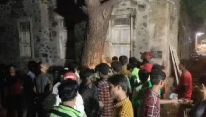 ગણેશ ચતુર્થી પહેલા જામનગરમાં ચમત્કાર થયો, વૃક્ષમાં ગણેશજી દેખાયા