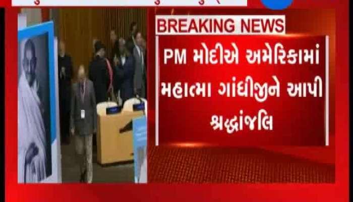 PM Modi Inaugurates Gandhi Solar Park At UN Headquarters