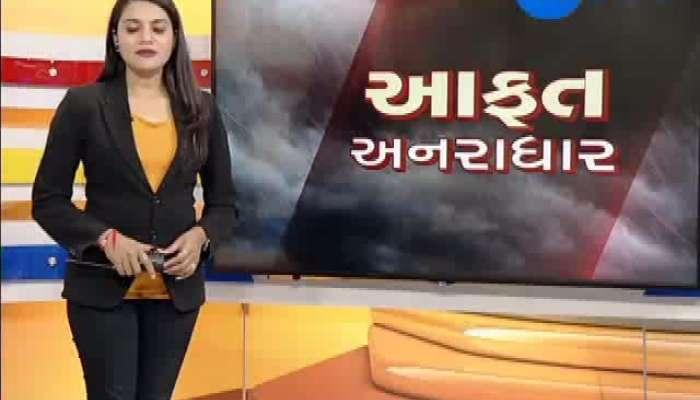Rainfall In 207 Talukas Of The Gujarat