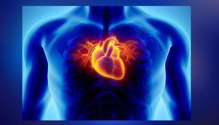 મોઢું સ્વચ્છ ન રાખો તો પણ તમને હૃદય સંબંધિત બિમારી થઈ શકે છે!