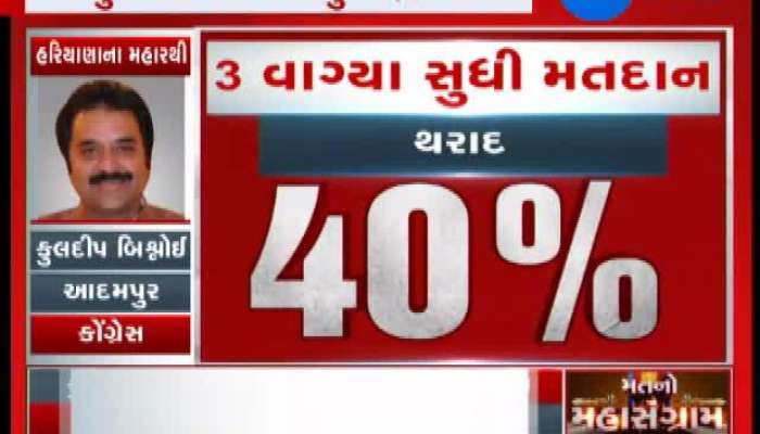 How many polls happened in Gujarat by-polls till 3pm