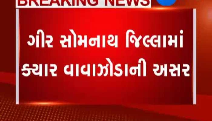Kiara Hurricanes Were Affected In Gir Somanath District