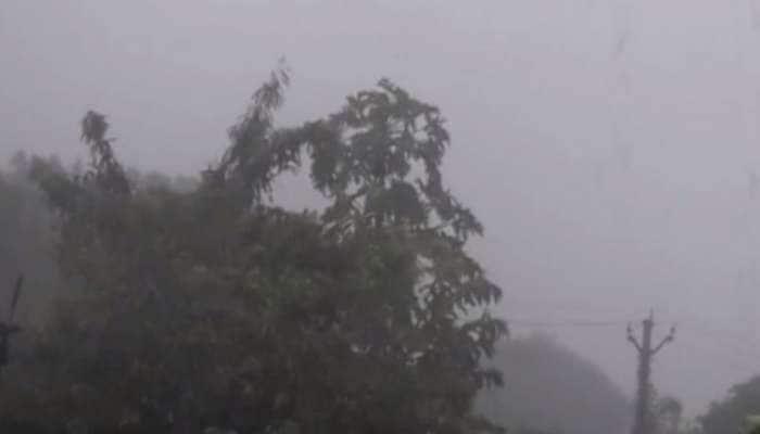 દ્વારકા અને જૂનાગઢ જિલ્લાના અનેક વિસ્તારોમાં ભારે પવન સાથે વરસાદ