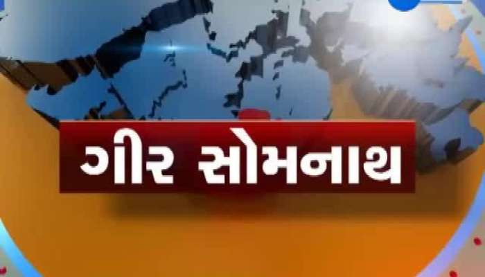 viral Video of lion Gir Gadhada
