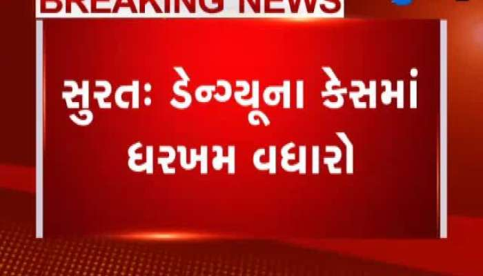 Case Of Dengue Increased In Surat, 25 Cases Registered In A Single Society