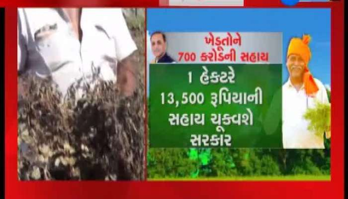 Farmers Say About State Government Declared Assistance