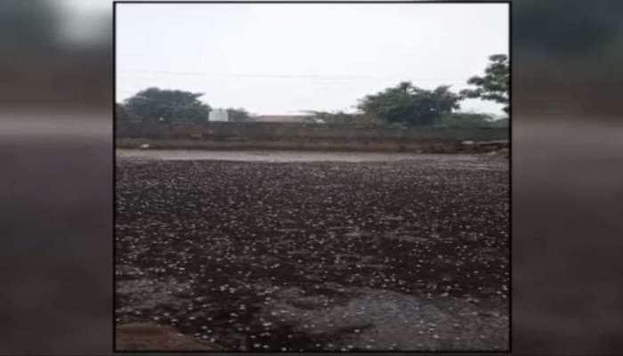 કચ્છમાં કરા સાથે વરસાદ પડ્યો, સૌરાષ્ટ્ર પંથકમાં ઠેરઠેર વરસાદી માહોલ