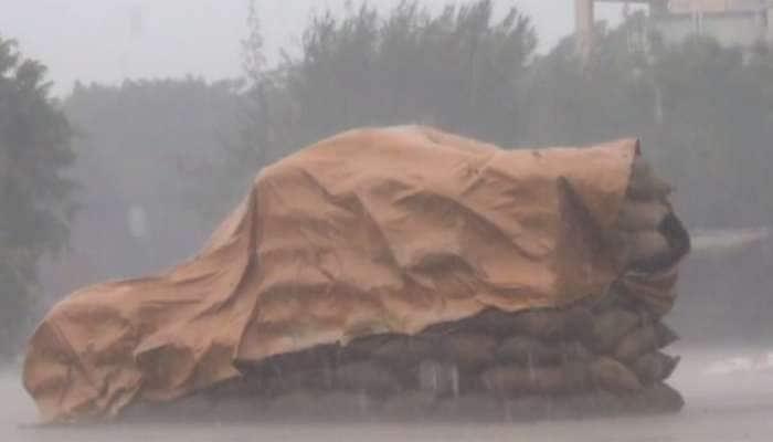 કમોસમી વરસાદે ખેડૂતને બેવડોવાળી દીધો: યાર્ડમાં હરાજી માટે રહેલો પાક પલળ્યો