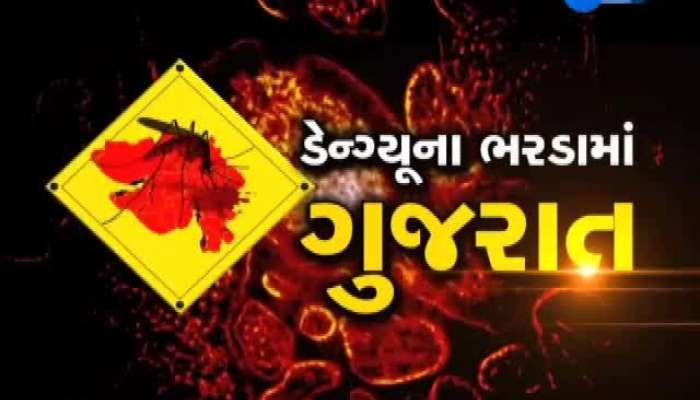 Reality Check about Dengue In All over Gujarat